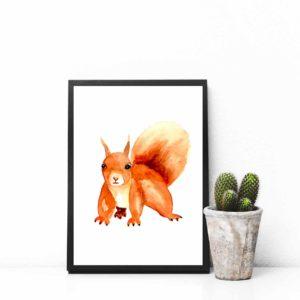 Eichhörnchen Motiv 2