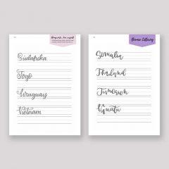Mega Lettering Bundle – 7 Lettering Guides in 1
